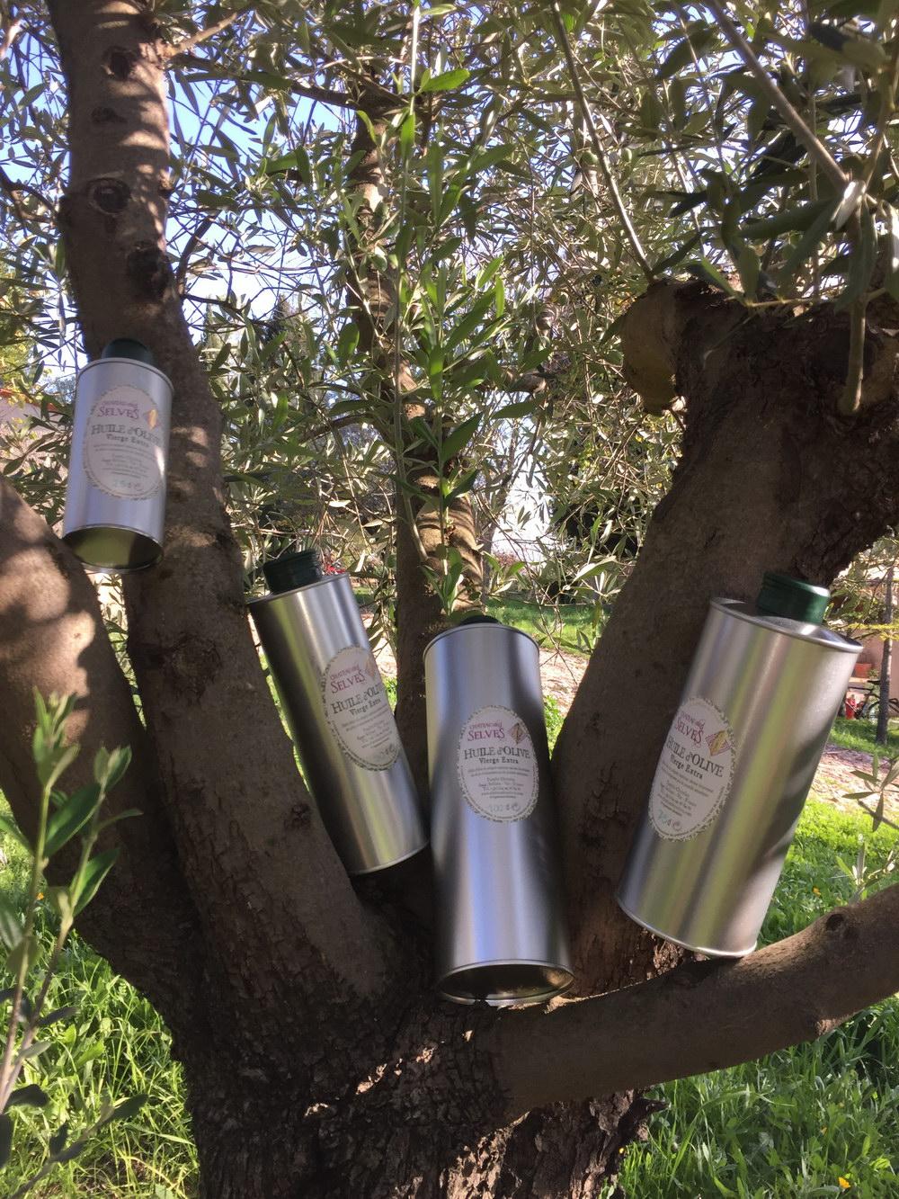 Huile d 39 olive de provence huile d 39 olive canton de for Huile d olive salon de provence